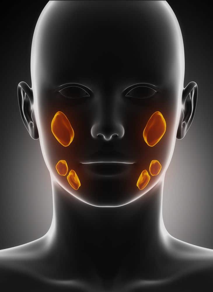 סרטן הפה - חשיבות הזיהוי המוקדם